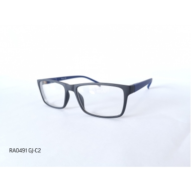 Готовые очки RA0491 GJ-C2
